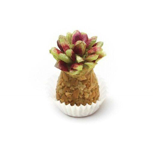 Ananas Pistache